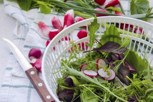 Spring Salad Topped with Marinated Fresh Radish